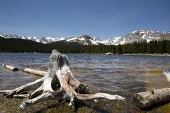 Lac Brainard, le Colorado, avec le tronçon d'arbre dans le premier plan Images libres de droits