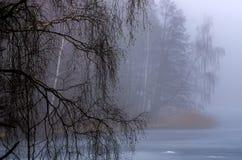 Lac brumeux avec les arbres nus autour image libre de droits