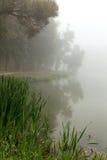 Lac brumeux pendant le matin image stock
