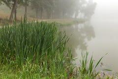 Lac brumeux pendant le matin images stock