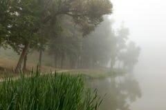 Lac brumeux pendant le matin photographie stock