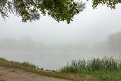Lac brumeux pendant le matin photo libre de droits