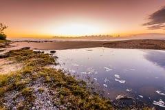 Lac côtier à l'aube Images stock