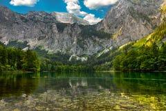 Lac caché dans les canetons de l'Autriche de montagnes errant image stock
