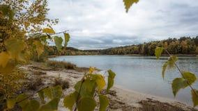 Lac caché derrière des arbres photographie stock libre de droits