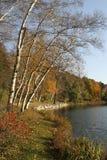 lac caché par jardins d'automne photo libre de droits