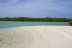 Lac Cai lagoon, Bonaire Royalty Free Stock Photo
