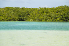Lac Cai lagoon, Bonaire Royalty Free Stock Photos