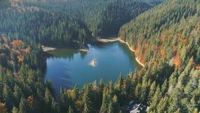 Lac calme pittoresque reflétant les silhouettes vertes d'arbre banque de vidéos