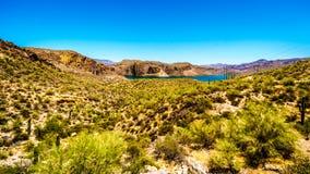 Lac canyon et le paysage de désert de la réserve forestière de Tonto Photos libres de droits