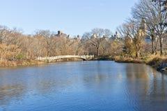 Lac central Park Image libre de droits
