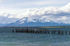 Lac chez Puerto Natales au Chili Image stock