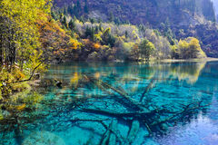 Lac coloré dans Jiuzhaigou Images libres de droits