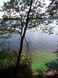 lac coloré dans la forêt image libre de droits