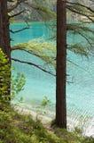 Lac coloré par vert en Styrie, Autriche Photographie stock libre de droits