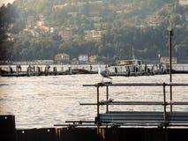 Lac Como Photographie stock libre de droits