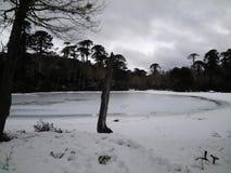 Lac congelé à l'EL Cañi, Pucon, Chili de Reserva Image stock