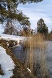 Lac congelé dans le cimetière ! ! Image libre de droits