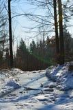 Lac congelé dans les montagnes Images libres de droits