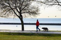 Lac d'Ontario Photographie stock libre de droits