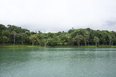 Lac Dambri images libres de droits