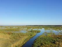 Lac dans l'herbe Photos stock