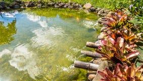 Lac dans l'International de Jurere Photos stock