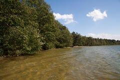 Lac dans la forêt Photo stock