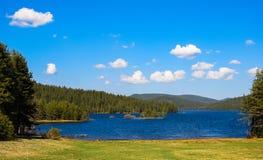 Lac dans la forêt de pin Photo stock