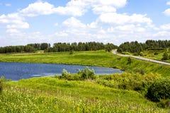Lac dans la forêt près de la route Images stock