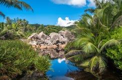 Lac dans la jungle, île de Digue de La, Seychelles Images libres de droits