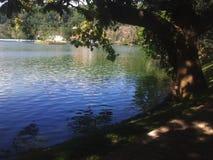 Lac dans la soir?e photos stock