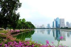 Lac dans la ville Photographie stock libre de droits