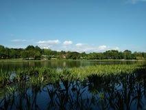 Lac dans la ville de Kuala Lumpur Photo stock