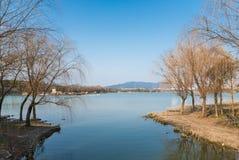 Lac dans le jardin Photos libres de droits