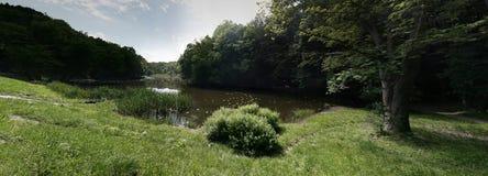 Lac dans le panorama de forêt photos stock