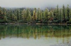 Lac dans le royaume des fées Images libres de droits