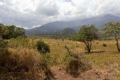 Lac dans le safari en Tanzanie Photo libre de droits