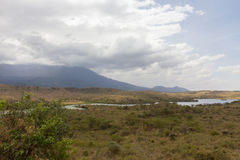 Lac dans le safari en Tanzanie Images stock