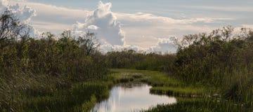 Lac dans les marais Safari Park Images libres de droits