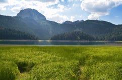 Lac dans les montagnes, herbe verte, été image libre de droits