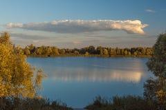 Lac dans un bois Images stock