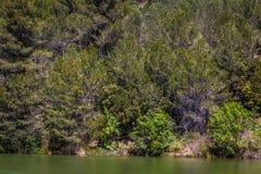 Lac DE Cavayere Stock Fotografie