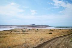 Lac de champ et de sel images libres de droits