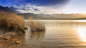 Lac de Codole, Reginu valley in Corsica Stock Photo