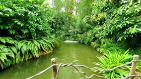 Lac de couleur verte avec les plantes vertes photo stock