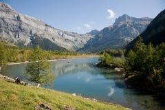 Lac de Derborence Stockfotos