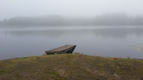 lac de forêt au lever de soleil dans le brouillard photos libres de droits