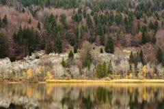 Lac de Joux Imágenes de archivo libres de regalías