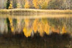 Lac de Joux Lizenzfreies Stockfoto